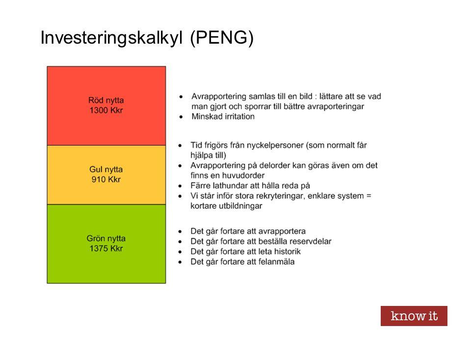 Investeringskalkyl (PENG)