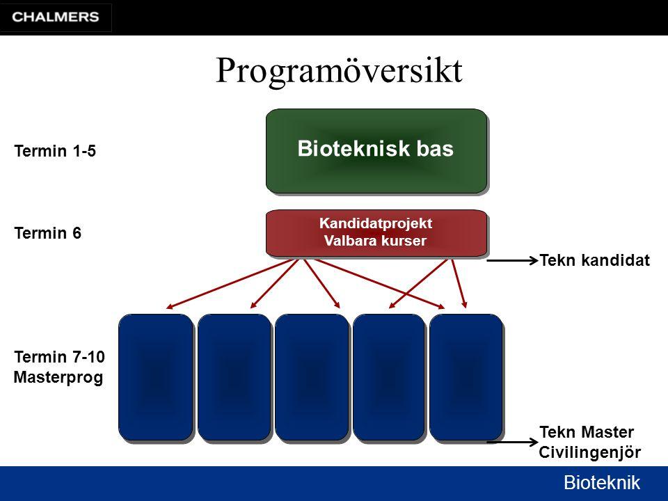 Bioteknik Kandidatprojekt Valbara kurser Bioteknisk bas Termin 1-5 Termin 6 Termin 7-10 Masterprog Programöversikt Tekn Master Civilingenjör Tekn kandidat