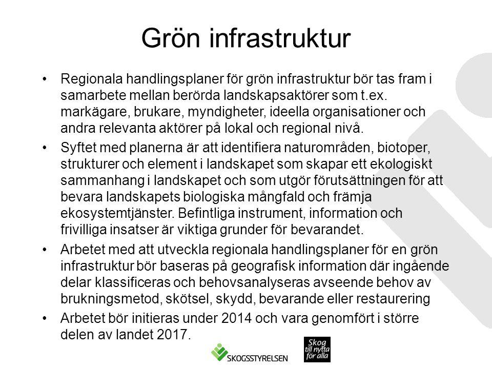 Grön infrastruktur Regionala handlingsplaner för grön infrastruktur bör tas fram i samarbete mellan berörda landskapsaktörer som t.ex.
