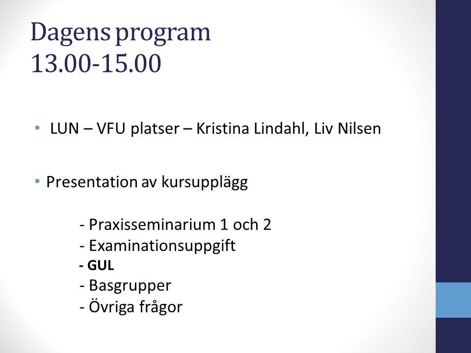 Dagens program 13.00-15.00 LUN – VFU platser – Kristina Lindahl, Liv Nilsen Presentation av kursupplägg - Praxisseminarium 1 och 2 - Examinationsuppgi