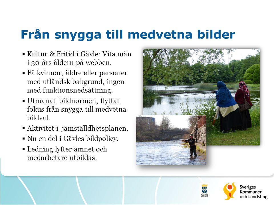 Från snygga till medvetna bilder  Kultur & Fritid i Gävle: Vita män i 30-års åldern på webben.  Få kvinnor, äldre eller personer med utländsk bakgru