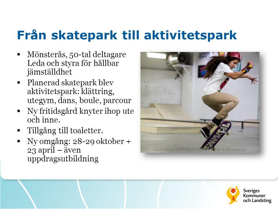 Från skatepark till aktivitetspark  Mönsterås, 50-tal deltagare Leda och styra för hållbar jämställdhet  Planerad skatepark blev aktivitetspark: klä