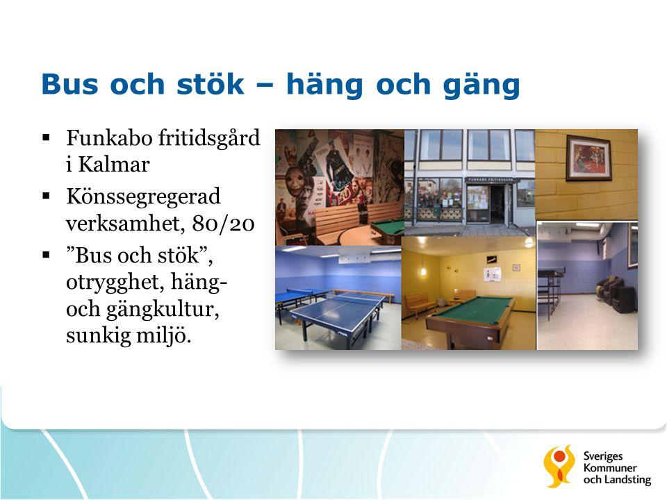 """Bus och stök – häng och gäng  Funkabo fritidsgård i Kalmar  Könssegregerad verksamhet, 80/20  """"Bus och stök"""", otrygghet, häng- och gängkultur, sunk"""