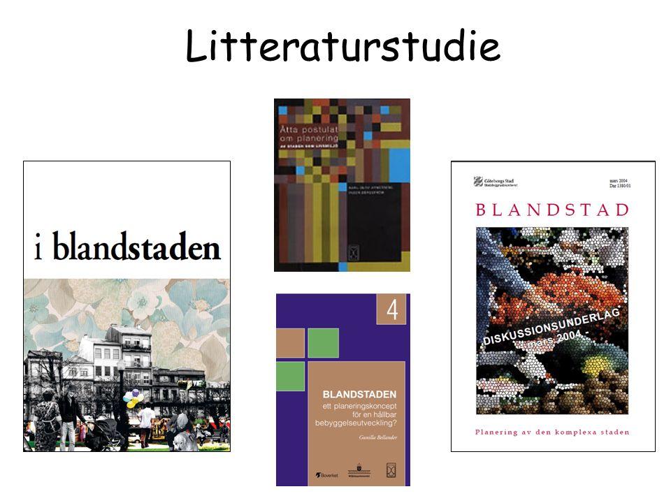 Litteraturstudie