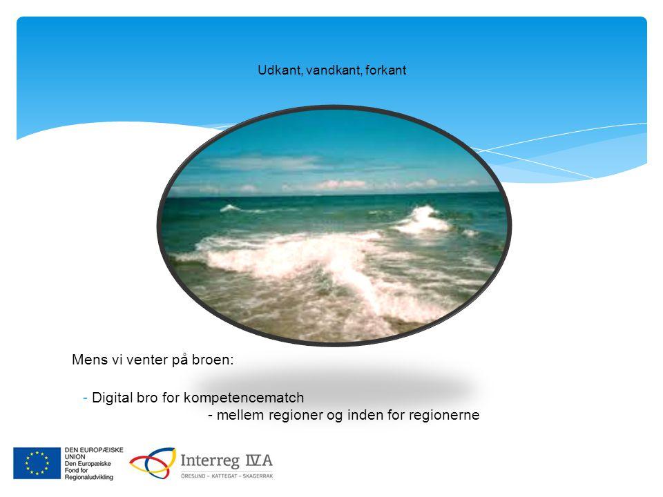 Udkant, vandkant, forkant Mens vi venter på broen: -Digital bro for kompetencematch - mellem regioner og inden for regionerne