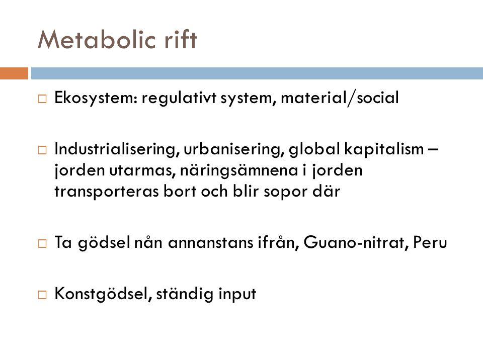 Metabolic rift  Ekosystem: regulativt system, material/social  Industrialisering, urbanisering, global kapitalism – jorden utarmas, näringsämnena i
