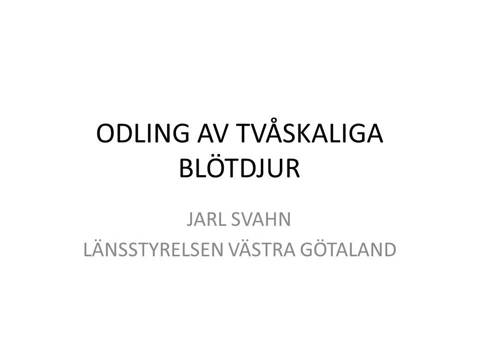ODLING AV TVÅSKALIGA BLÖTDJUR JARL SVAHN LÄNSSTYRELSEN VÄSTRA GÖTALAND