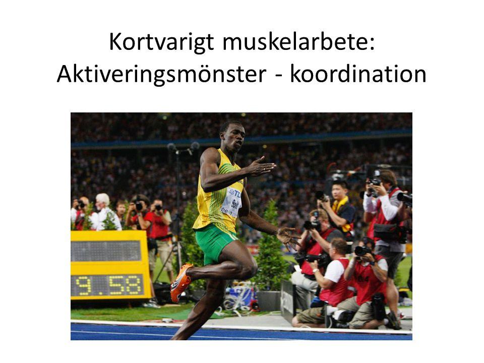Kortvarigt muskelarbete: Aktiveringsmönster - koordination