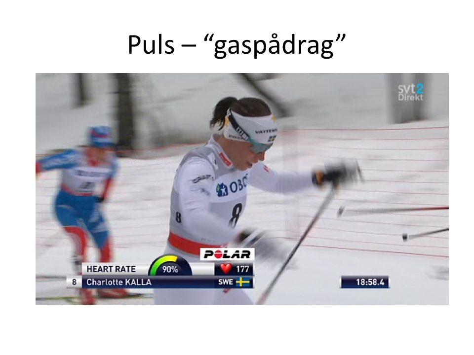 Puls – gaspådrag