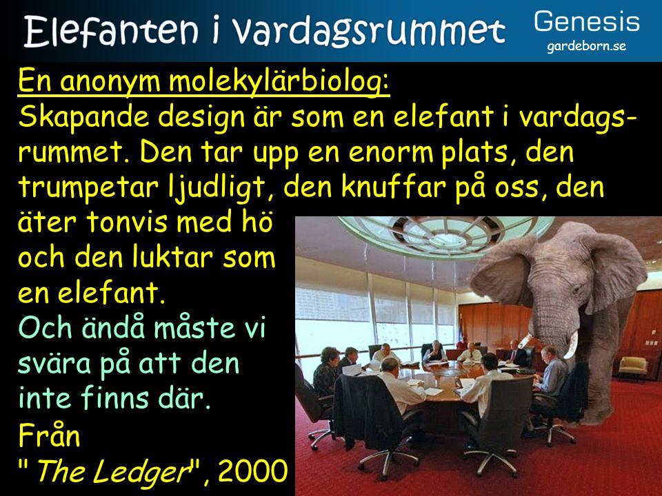 gardeborn.se En anonym molekylärbiolog: Skapande design är som en elefant i vardags- rummet.