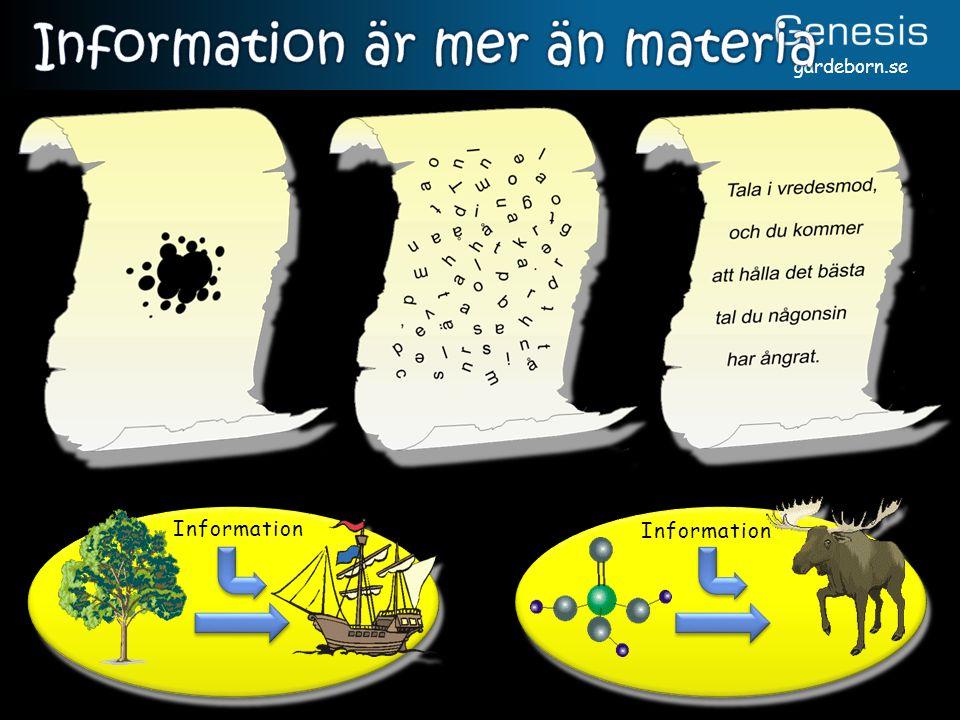 gardeborn.se Information