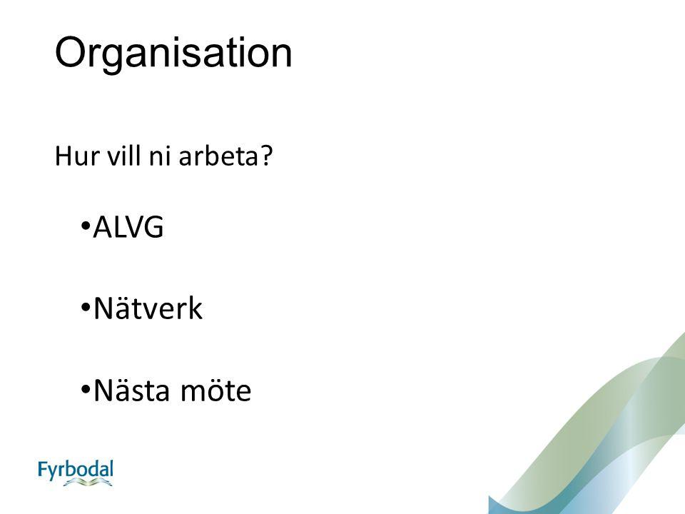 Organisation Hur vill ni arbeta? ALVG Nätverk Nästa möte