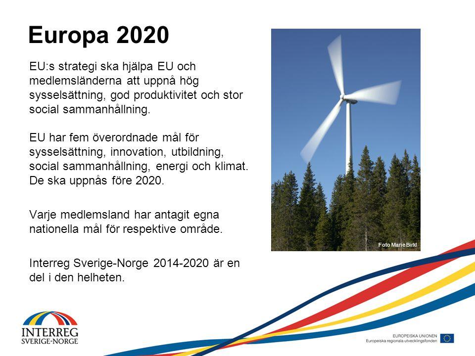 Europa 2020 EU:s strategi ska hjälpa EU och medlemsländerna att uppnå hög sysselsättning, god produktivitet och stor social sammanhållning.
