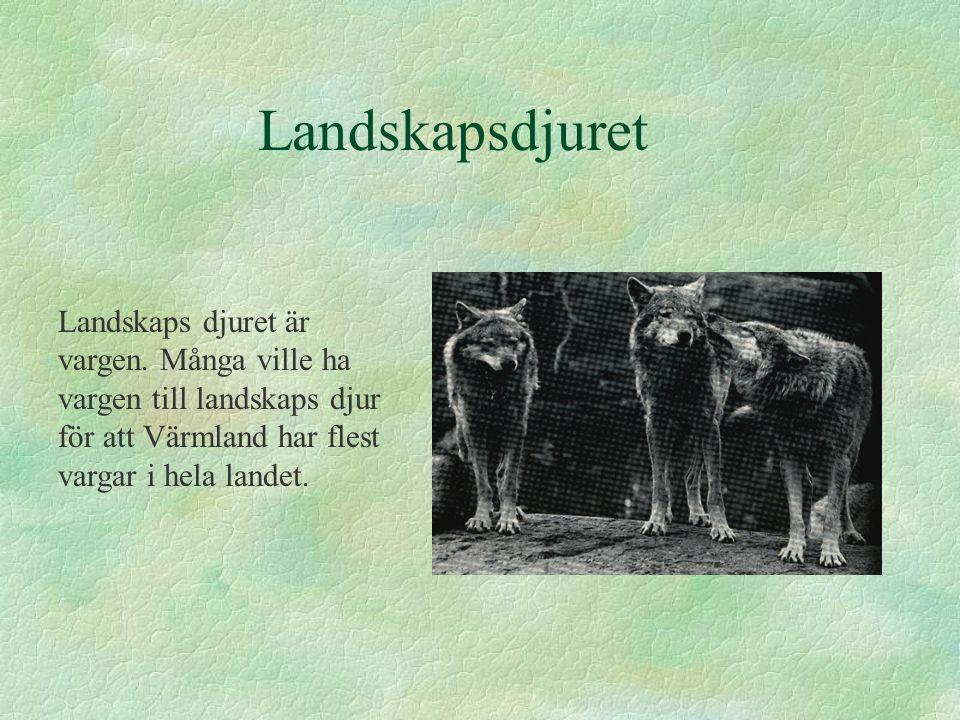 Landskapsdjuret Landskaps djuret är vargen. Många ville ha vargen till landskaps djur för att Värmland har flest vargar i hela landet.