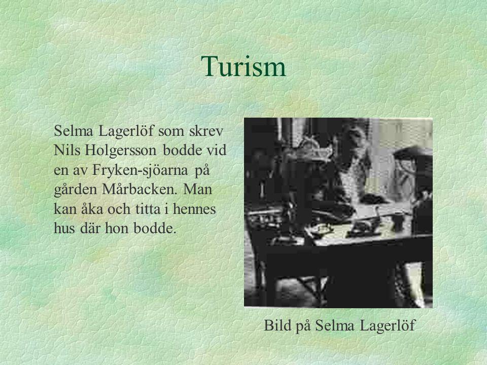 Turism Selma Lagerlöf som skrev Nils Holgersson bodde vid en av Fryken-sjöarna på gården Mårbacken. Man kan åka och titta i hennes hus där hon bodde.