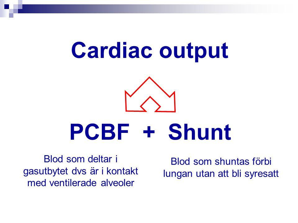Cardiac output PCBF + Shunt Blod som deltar i gasutbytet dvs är i kontakt med ventilerade alveoler Blod som shuntas förbi lungan utan att bli syresatt