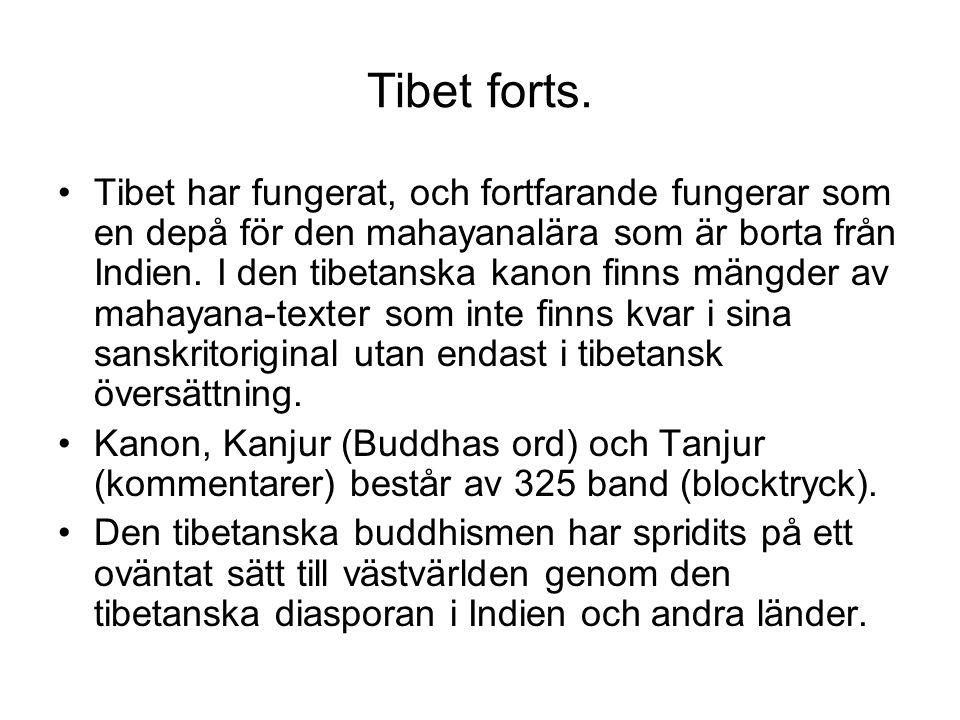 Tibet forts. Tibet har fungerat, och fortfarande fungerar som en depå för den mahayanalära som är borta från Indien. I den tibetanska kanon finns mäng