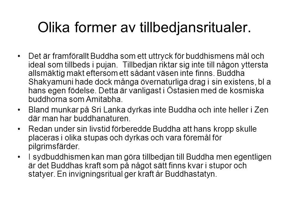 Olika former av tillbedjansritualer. Det är framförallt Buddha som ett uttryck för buddhismens mål och ideal som tillbeds i pujan. Tillbedjan riktar s