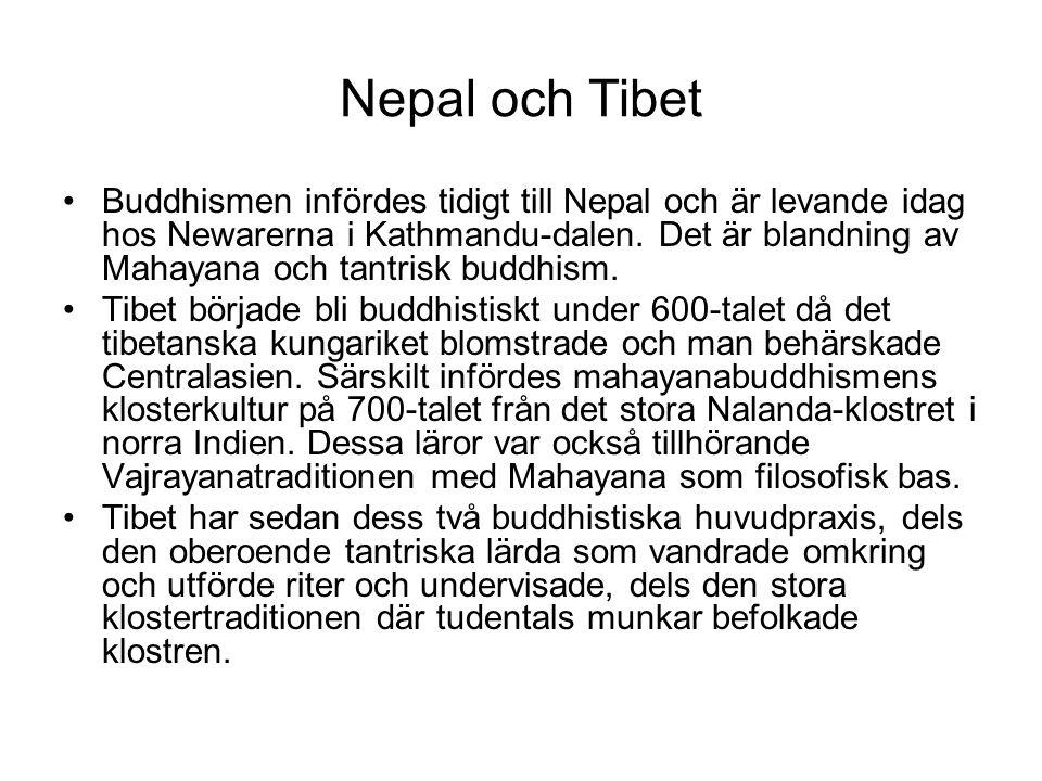 Nepal och Tibet Buddhismen infördes tidigt till Nepal och är levande idag hos Newarerna i Kathmandu-dalen. Det är blandning av Mahayana och tantrisk b