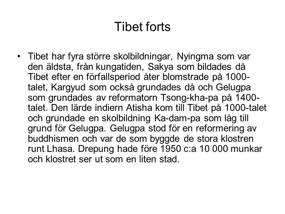 Tibet forts Tibet har fyra större skolbildningar, Nyingma som var den äldsta, från kungatiden, Sakya som bildades då Tibet efter en förfallsperiod åte