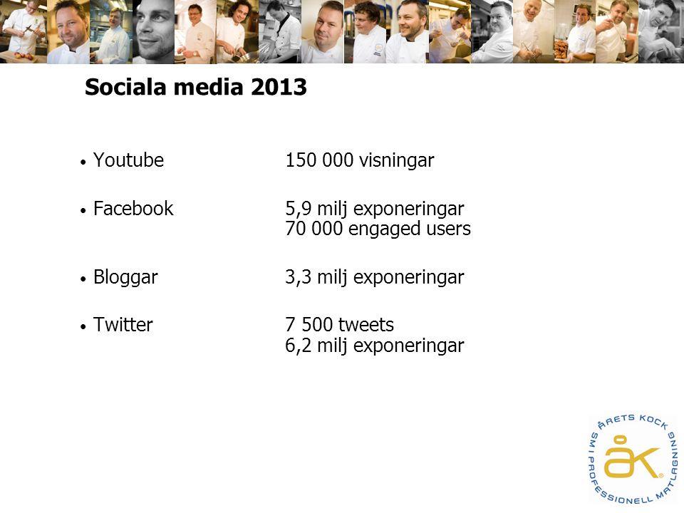 Sociala media 2013 Youtube150 000 visningar Facebook5,9 milj exponeringar 70 000 engaged users Bloggar3,3 milj exponeringar Twitter7 500 tweets 6,2 milj exponeringar