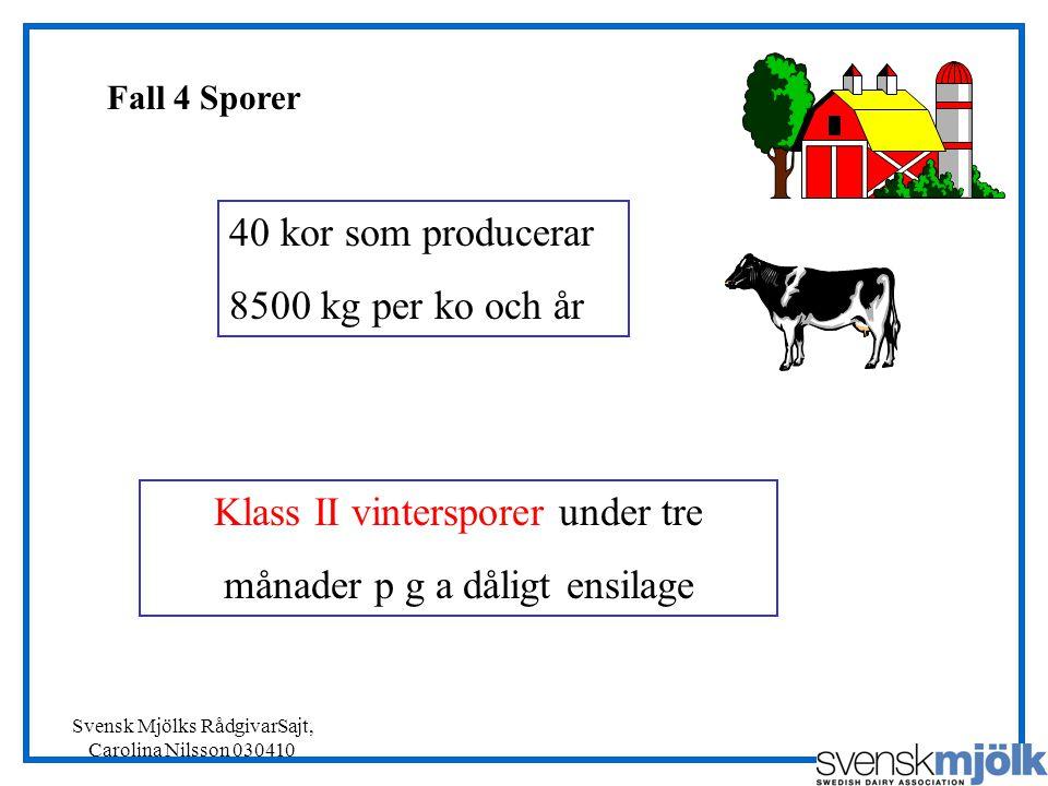 Svensk Mjölks RådgivarSajt, Carolina Nilsson 030410 Fall 4 Sporer Klass II vintersporer under tre månader p g a dåligt ensilage 40 kor som producerar 8500 kg per ko och år
