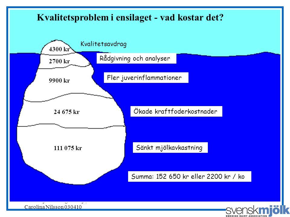 Svensk Mjölks RådgivarSajt, Carolina Nilsson 030410 Kvalitetsproblem i ensilaget - vad kostar det.