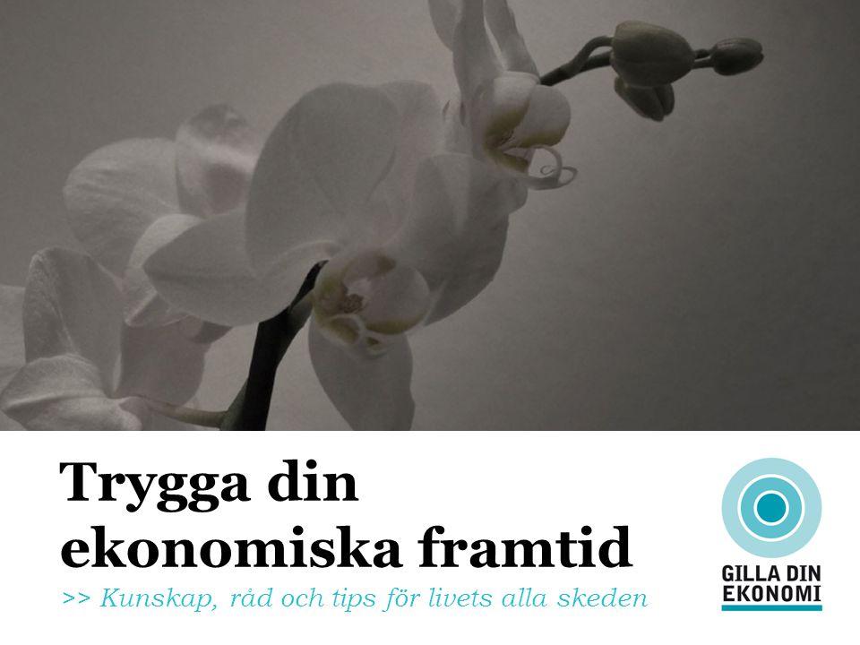 Trygga din ekonomiska framtid >> Kunskap, råd och tips för livets alla skeden