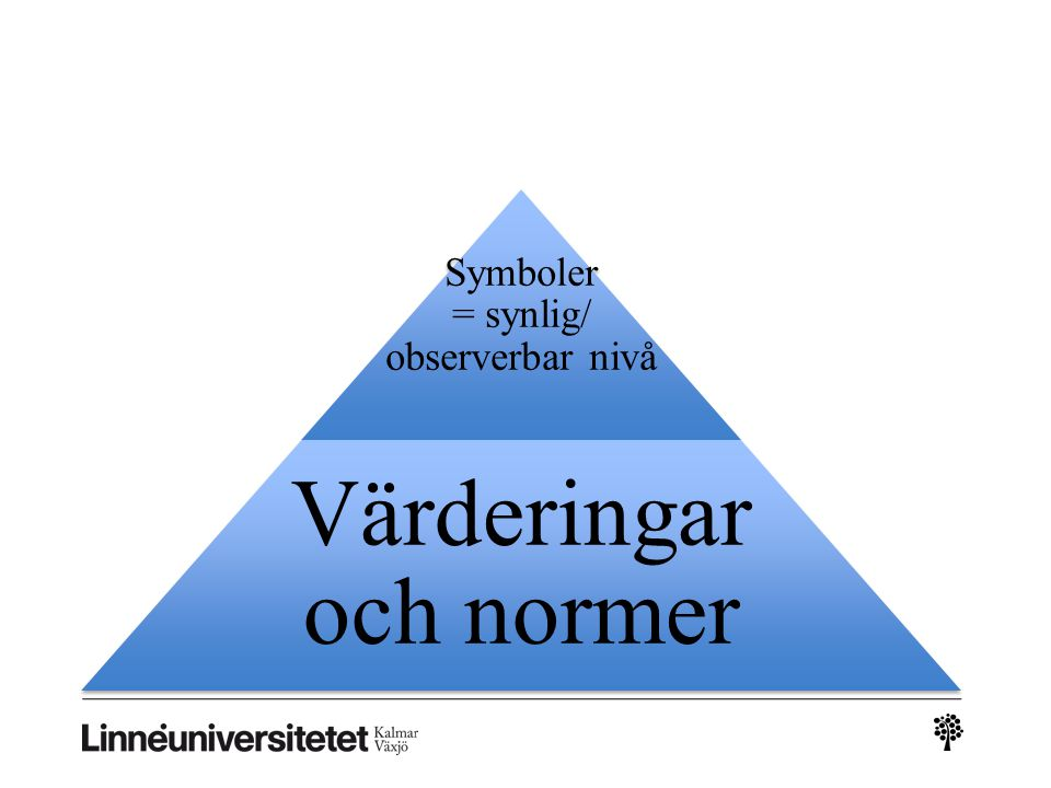 Symboler = synlig/ observerbar nivå Värderingar och normer