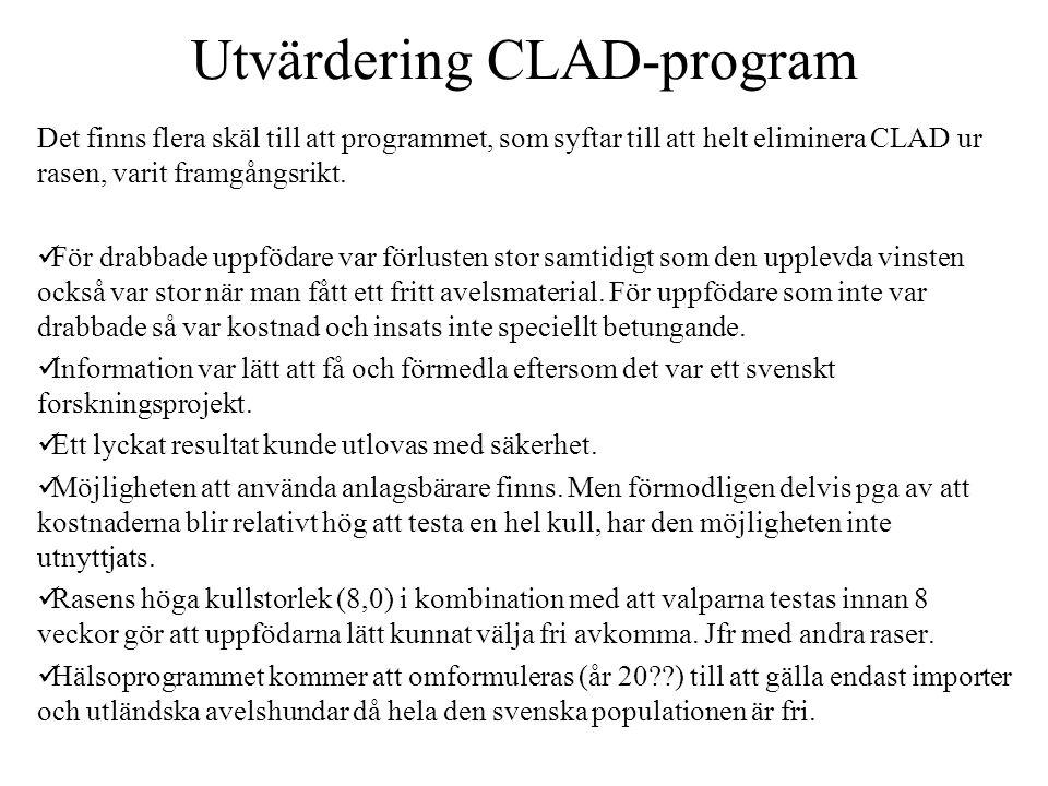 Utvärdering CLAD-program Det finns flera skäl till att programmet, som syftar till att helt eliminera CLAD ur rasen, varit framgångsrikt.