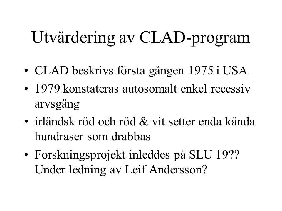 Utvärdering av CLAD-program CLAD beskrivs första gången 1975 i USA 1979 konstateras autosomalt enkel recessiv arvsgång irländsk röd och röd & vit setter enda kända hundraser som drabbas Forskningsprojekt inleddes på SLU 19?.