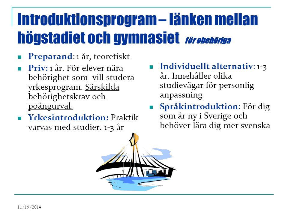 11/19/2014 Introduktionsprogram – länken mellan högstadiet och gymnasiet för obehöriga Preparand: 1 år, teoretiskt Priv: 1 år.