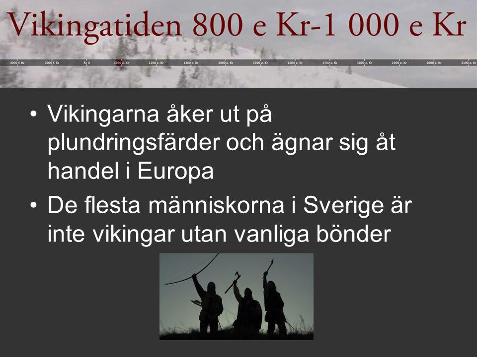 Vikingarna åker ut på plundringsfärder och ägnar sig åt handel i Europa De flesta människorna i Sverige är inte vikingar utan vanliga bönder