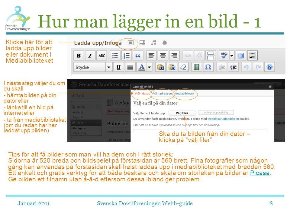 Januari 2011Svenska Downforeningen Webb-guide8 Hur man lägger in en bild - 1 Klicka här för att ladda upp bilder eller dokument i Mediabiblioteket I n