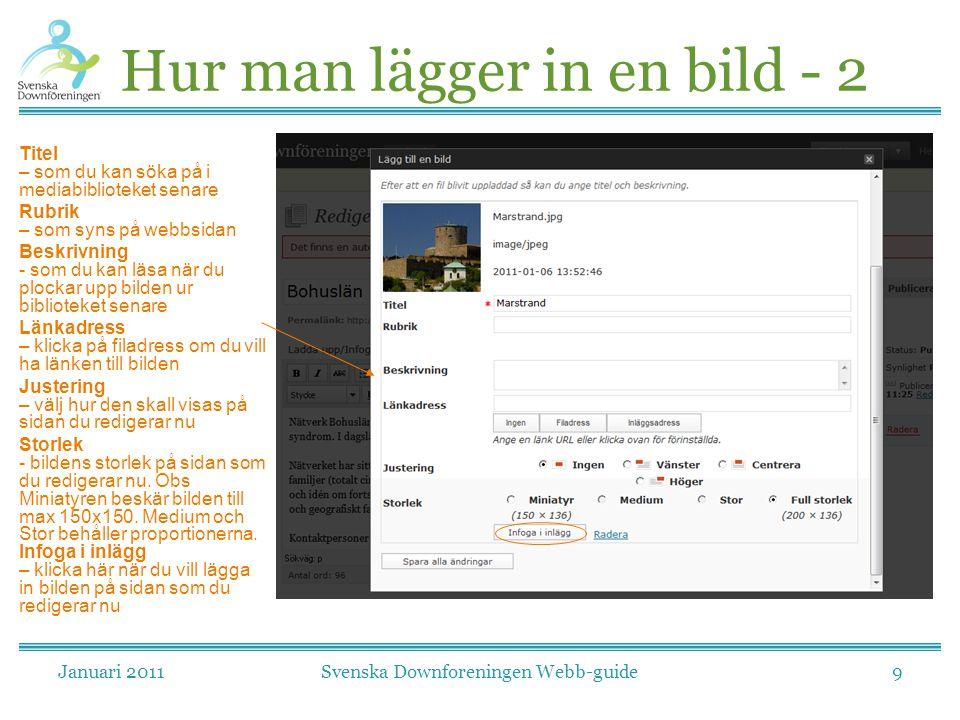 Januari 2011Svenska Downforeningen Webb-guide9 Hur man lägger in en bild - 2 Titel – som du kan söka på i mediabiblioteket senare Rubrik – som syns på