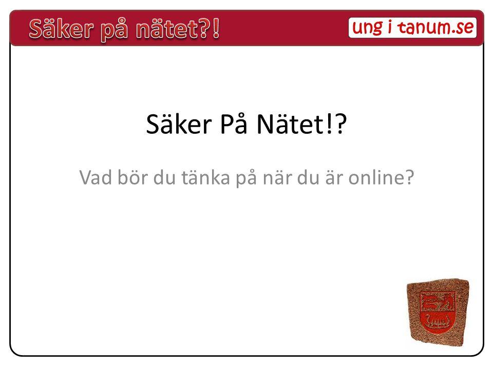 Säker På Nätet!? Vad bör du tänka på när du är online?