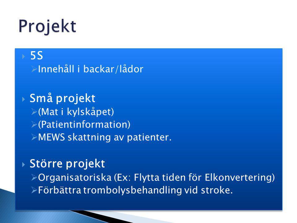 5S  Innehåll i backar/lådor  Små projekt  (Mat i kylskåpet)  (Patientinformation)  MEWS skattning av patienter.  Större projekt  Organisatori