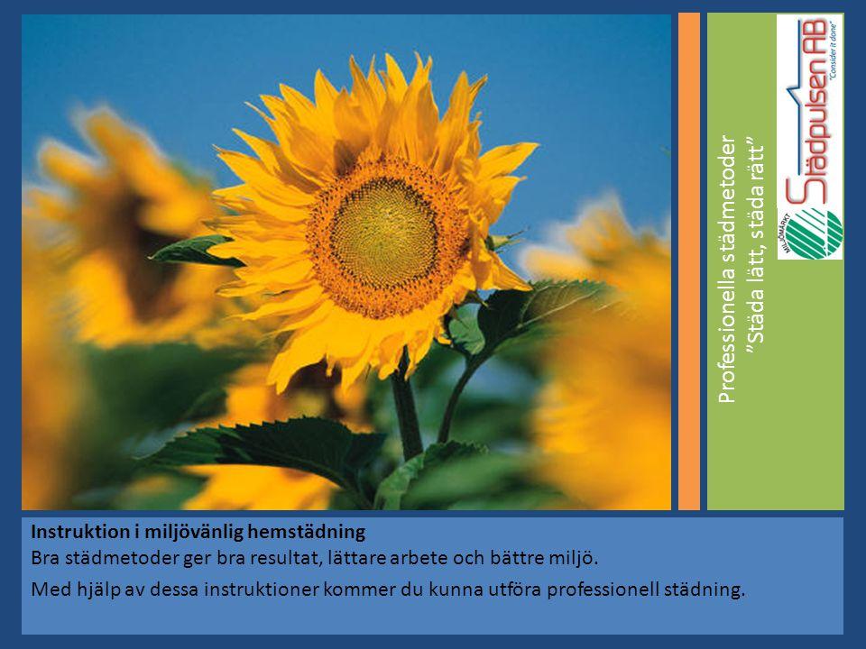 Professionella städmetoder Städa lätt, städa rätt Instruktion i miljövänlig hemstädning Bra städmetoder ger bra resultat, lättare arbete och bättre miljö.