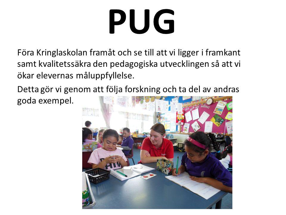 PUG Föra Kringlaskolan framåt och se till att vi ligger i framkant samt kvalitetssäkra den pedagogiska utvecklingen så att vi ökar elevernas måluppfyllelse.