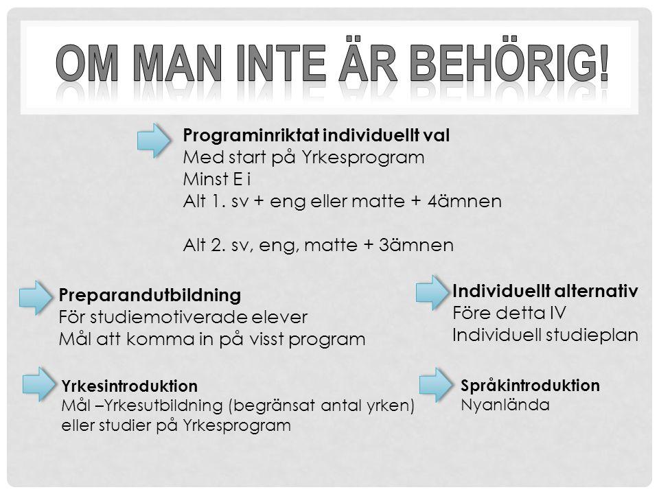 Programinriktat individuellt val Med start på Yrkesprogram Minst E i Alt 1.