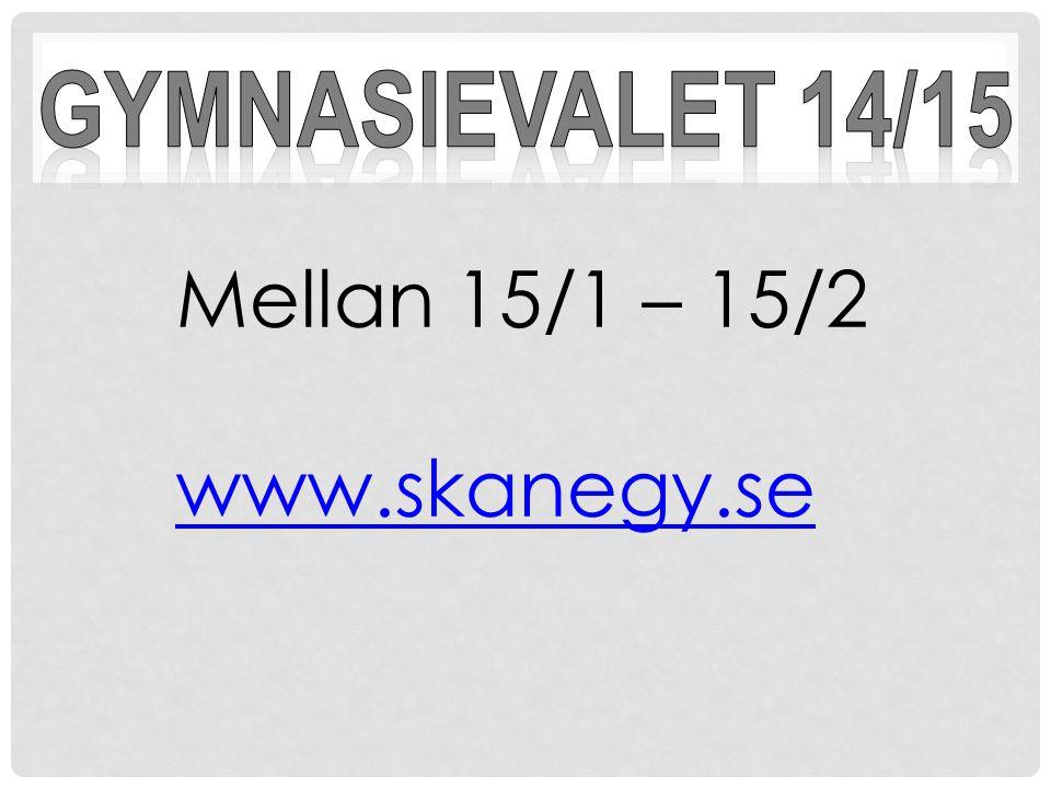 Mellan 15/1 – 15/2 www.skanegy.se