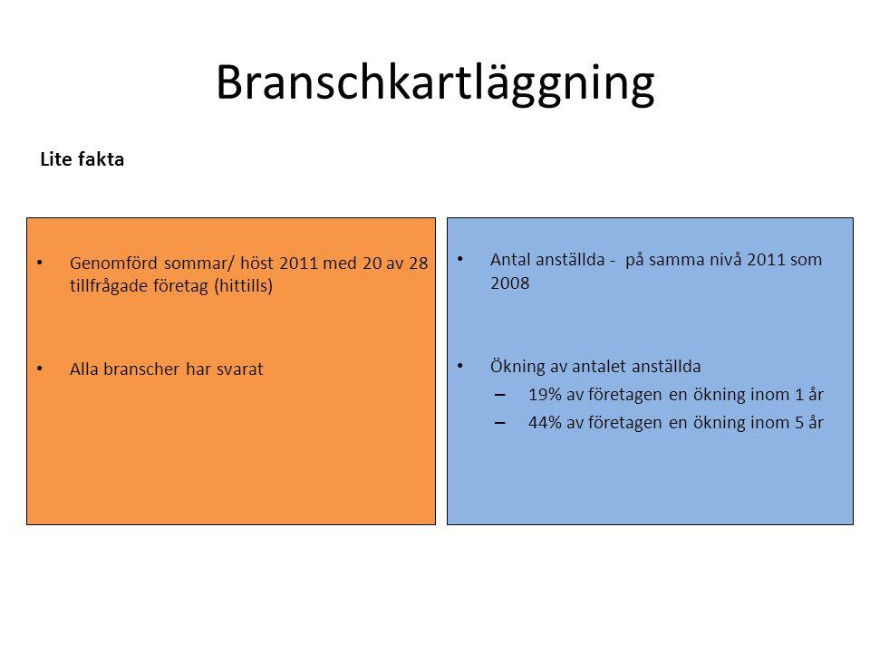 Branschkartläggning Genomförd sommar/ höst 2011 med 20 av 28 tillfrågade företag (hittills) Alla branscher har svarat Antal anställda - på samma nivå