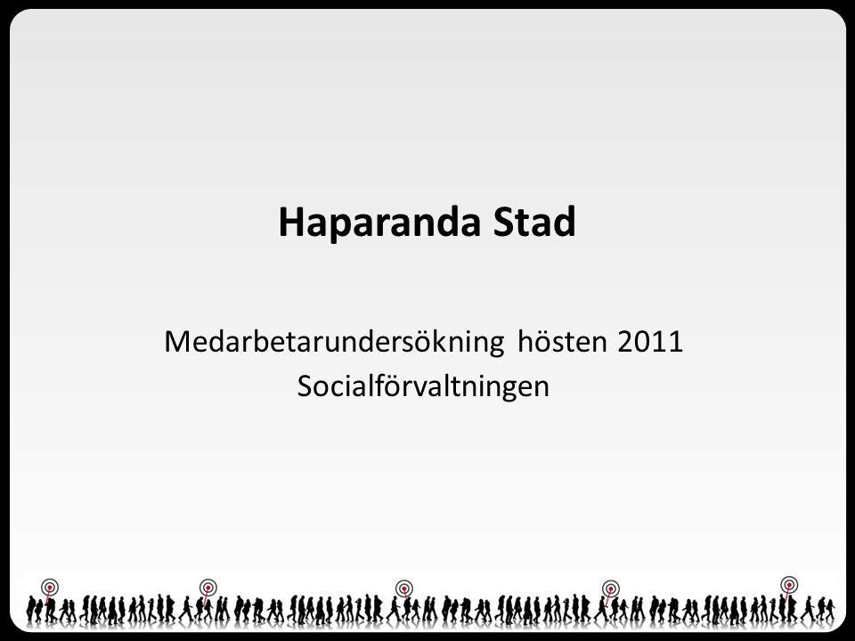 Presentation Om undersökningen Förklaringar Resultat - Index - Per fråga Prioriteringsdiagram, Haparanda stad totalt Sammanfattning
