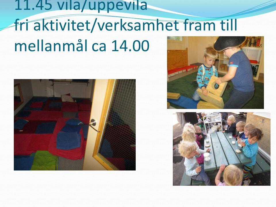 11.45 vila/uppevila fri aktivitet/verksamhet fram till mellanmål ca 14.00