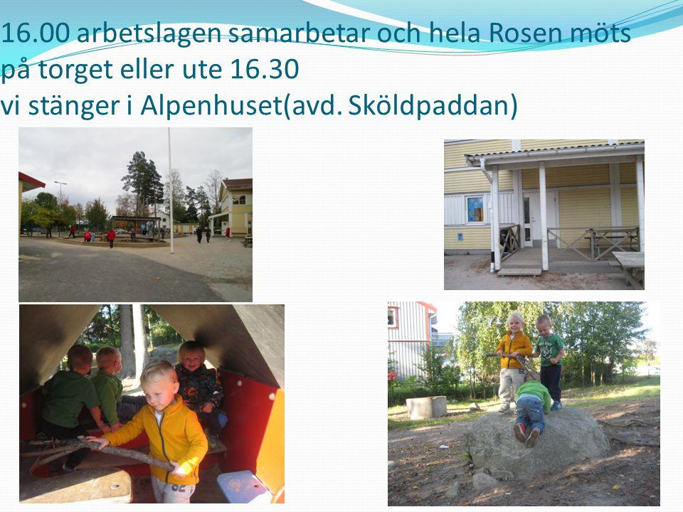 16.00 arbetslagen samarbetar och hela Rosen möts på torget eller ute 16.30 vi stänger i Alpenhuset(avd. Sköldpaddan)