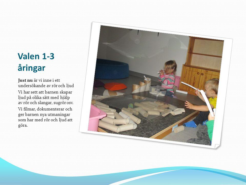 Valen 1-3 åringar Just nu är vi inne i ett undersökande av rör och ljud Vi har sett att barnen skapar ljud på olika sätt med hjälp av rör och slangar,