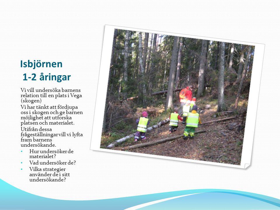 Isbjörnen 1-2 åringar Vi vill undersöka barnens relation till en plats i Vega (skogen) Vi har tänkt att fördjupa oss i skogen och ge barnen möjlighet