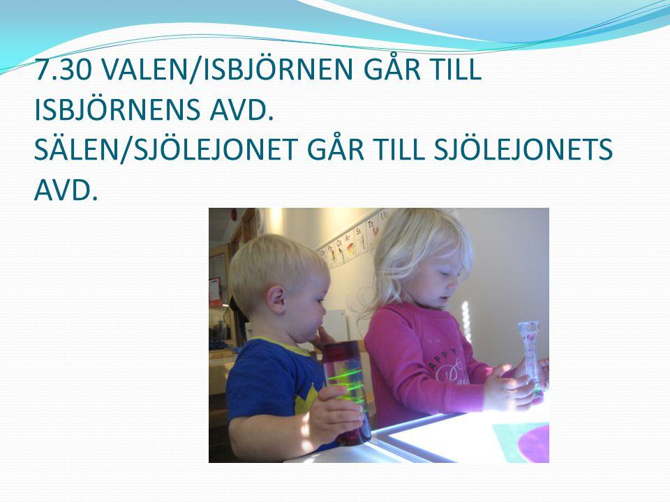 7.30 VALEN/ISBJÖRNEN GÅR TILL ISBJÖRNENS AVD. SÄLEN/SJÖLEJONET GÅR TILL SJÖLEJONETS AVD.