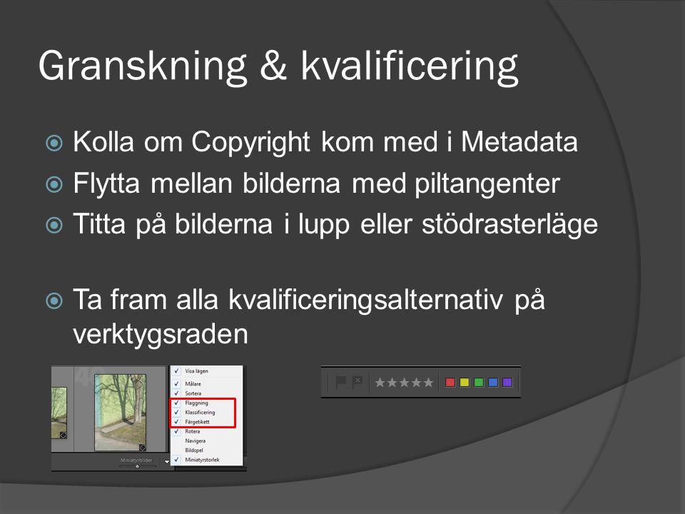 Granskning & kvalificering  Kolla om Copyright kom med i Metadata  Flytta mellan bilderna med piltangenter  Titta på bilderna i lupp eller stödrast