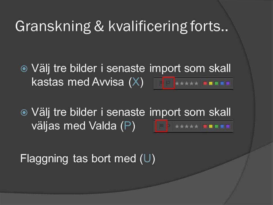 Granskning & kvalificering forts..  Välj tre bilder i senaste import som skall kastas med Avvisa (X)  Välj tre bilder i senaste import som skall väl